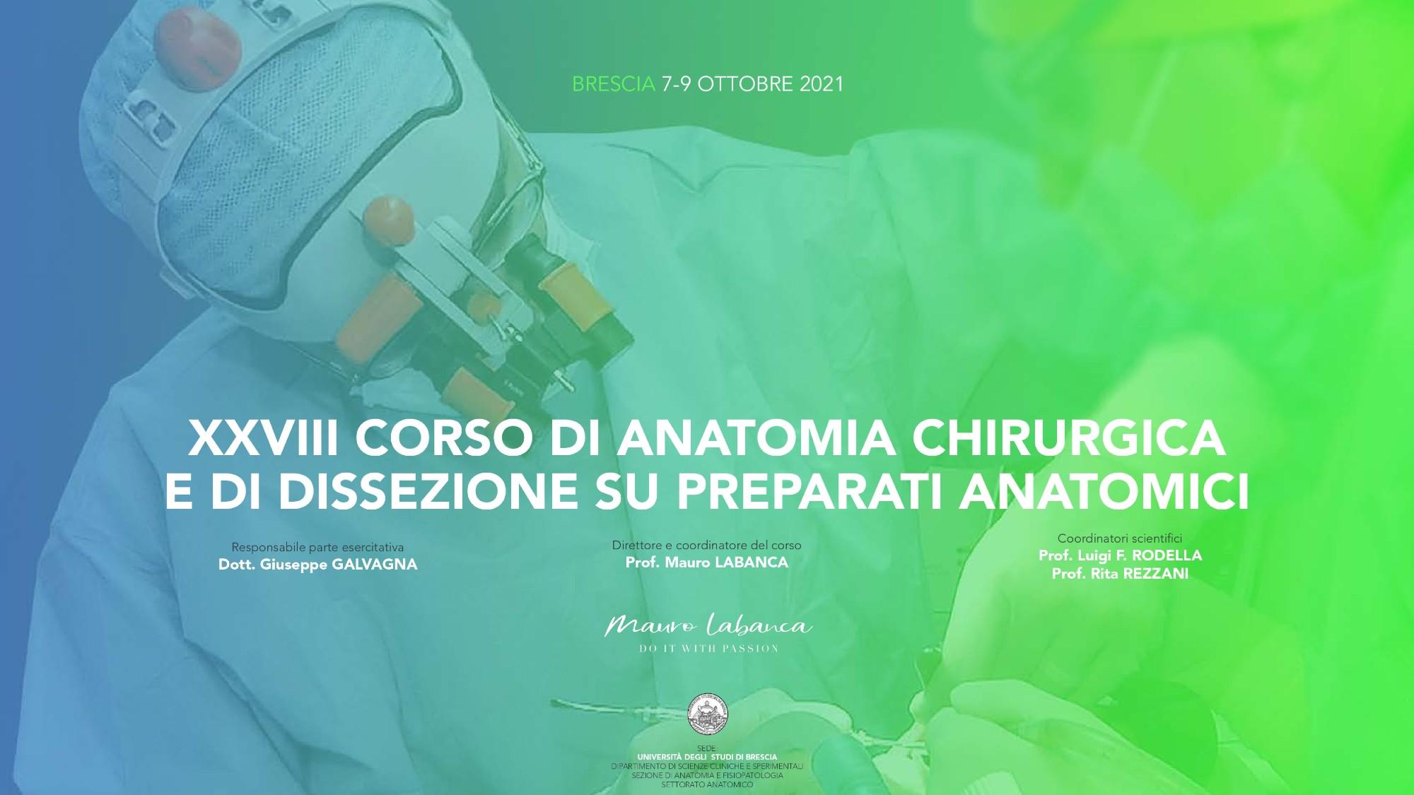 XXVIII corso di Anatomia Chirurgica e di Dissezione su preparati anatomici
